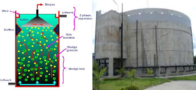 Upflow Anaerobic Sludge Blanket (UASB)